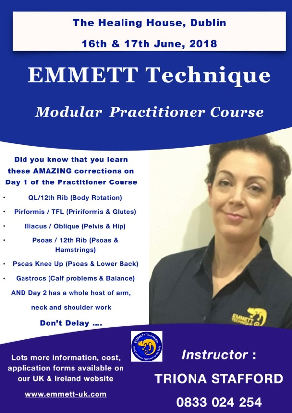 EMMETT Technique Modular Practitioner Course