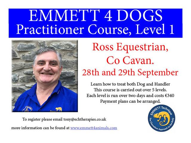 Emmett 4 Dogs - E4D PC Ireland September 2019