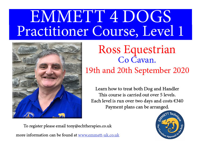 Emmett 4 Dogs - Practitioners Course, Level 1