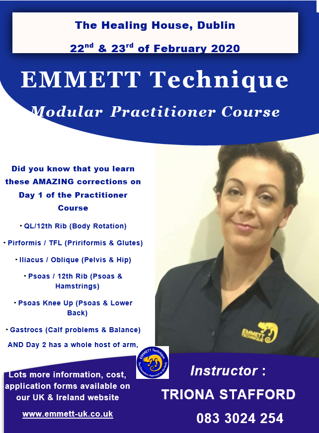 Emmett Technique Poster Training Course 22nd and 23rd Feb 2020