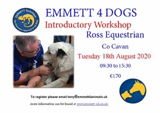 Emmett 4 Dogs – Introductory Workshop